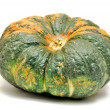 Green pumpkin - Foto Stock