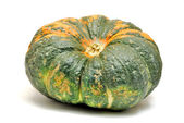 Green pumpkin — Stock Photo