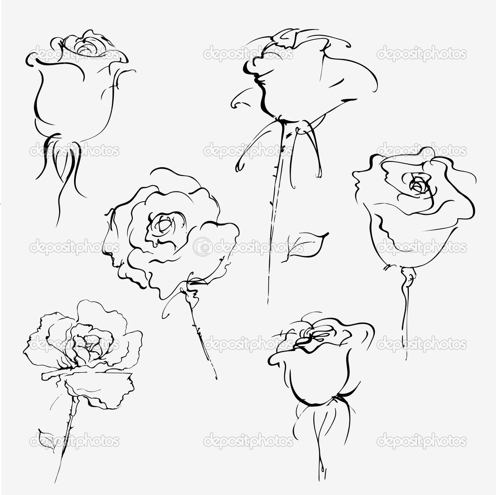 Hand drawn vector sketch of bud of roses on white — Stock Vector #2953543