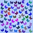 Stock Vector: Butterfly background