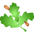 Vector de stock : Oak