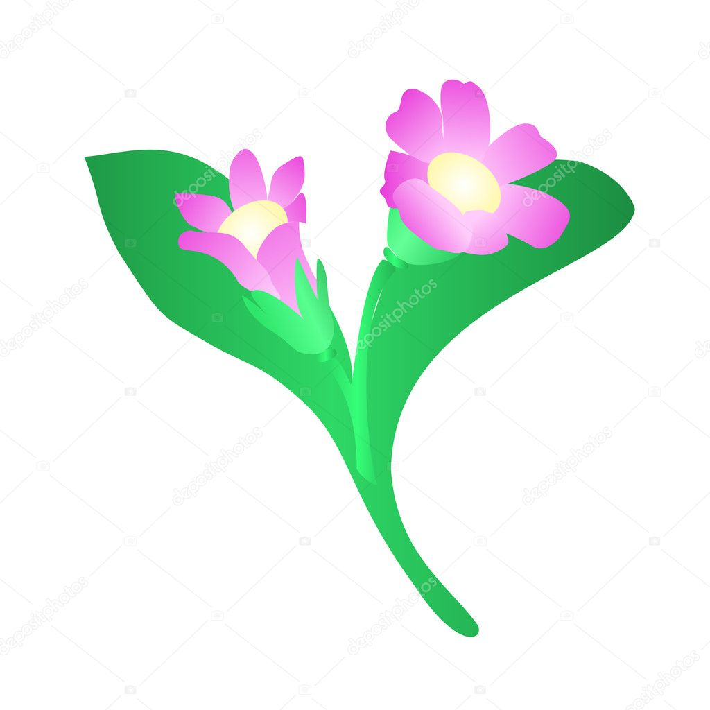 Flower,  multicolored nice illustration  Stock Vector #3852899