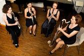 Actuación del cuarteto de clarinete — Foto de Stock