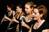 Clarinetist performance — Stock Photo
