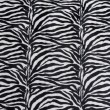 Zebra texture — Stock Photo #3228804