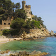 Costa Brava,Catalonia,Spain - Foto Stock
