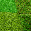 Stock Photo: Artificial grass selection