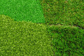 Artificial grass selection — Stock Photo