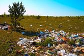 Pilha de lixo na clareira de madeira — Foto Stock
