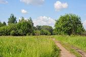 Central Russian landscape — Stock Photo