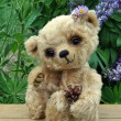 Stock Photo: Teddy-bear Lucky