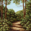 Footpath in mountain wood — Stock Photo