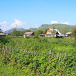 The Altay village — Stock Photo