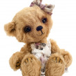 Royalty-Free Stock Photo: Teddy bear Lucky, isolated
