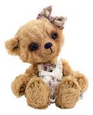 Teddy bear Lucky, isolated — Stock Photo