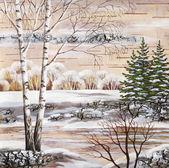 The Siberian winter lake — Stockfoto