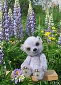Ursinho chupa entre flores — Fotografia Stock