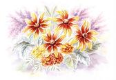 Rudbeckia a měsíčku květiny — Stock fotografie