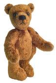 Teddy-bear from plush — Stock Photo