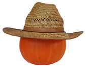 Pumpkin in the straw hat — Stock Photo