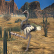 Ostrich-3D Animal — Stock Photo #2702434