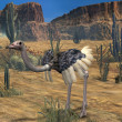 Ostrich-3D Animal — Stock Photo