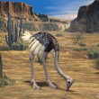 Ostrich-3D Animal — Stock Photo #2702506
