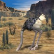 Ostrich-3D Animal — Stock Photo #2702527