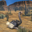Ostrich-3D Animal — Stock Photo #2702624