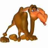 Toon Camel — Stock Photo