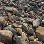 Stone — Stock Photo #2784729