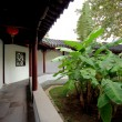 Chinese traditional garden - 图库照片