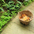 Basket in garden with dry leaf — Stock Photo