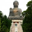 Tian Tan Buddha — Stock Photo #2785536