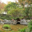 Chinese garden — Stock Photo
