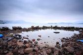 在海岸线浪费的饲料 — 图库照片