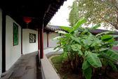 Jardín chino tradicional — Foto de Stock