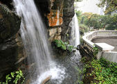 Waterfall in park — Foto Stock