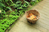 Basket in garden with dry leaf — 图库照片