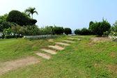 Path on grass — Stock Photo