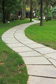 путь в саду — Стоковое фото