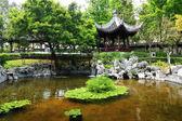 Chinese garden — Foto Stock