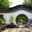 Chinese traditional garden - Stock Photo