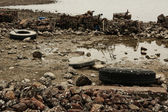Garbage on coast — Stock Photo