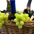 Grapes and wine in a basket — Stok fotoğraf