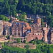 Heidelberg castle — Stock Photo #2728846