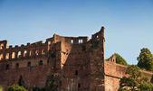 Part of Heidelberg castle — Stock Photo