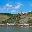 Gutenfels castle in rhine valley - Stock Photo