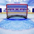 Stock Photo: Indoor Ice Hockey Net