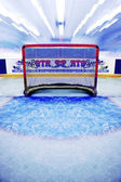 Indoor Ice Hockey Net — Stock Photo